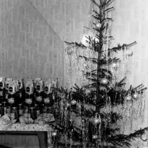 weihnachstbaum_vorraete